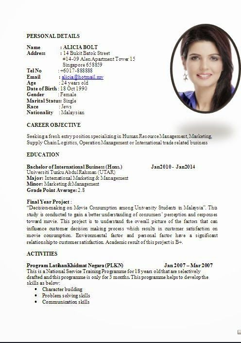 cv layout Sample Template Example ofExcellent Curriculum Vitae - international business resume