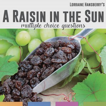 video quiz raisin in the sun Take the quiz: a raisin in the sun loraine hansberrys first play was an emotionally wrenching, thought-provoking masterpiece that became an instant critical and commercial success.