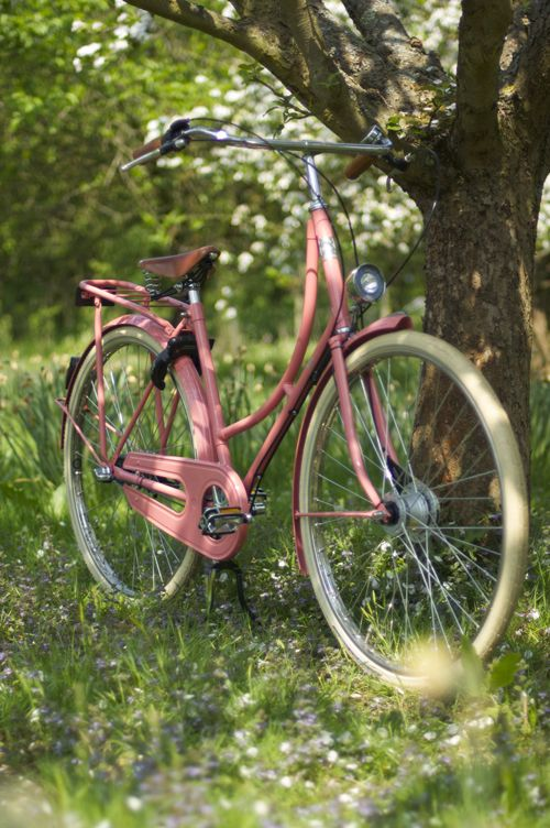 Summer Dreaming | Longing for Bike Rides with a Pink Bella Beg Bicycle