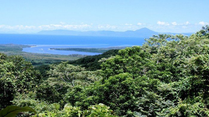 The Daintree, where rainforest and reef meet - Geography (3,8)
