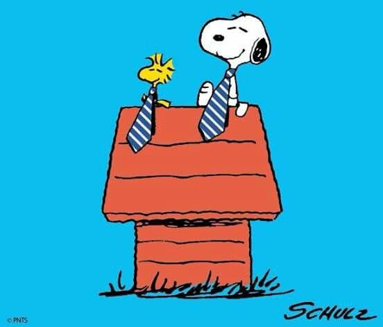 1000+ Bilder zu Snoopy, Woodstock & Friends auf Pinterest