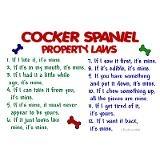 Cocker Spaniel Property LawsDachshund Design, Dachshund Gift, Spaniels Coffe, Property Law, Spaniels Property, Dogs Cock Spaniels, Cocker Spaniels, Dachshund Property, Dogcock Spaniels