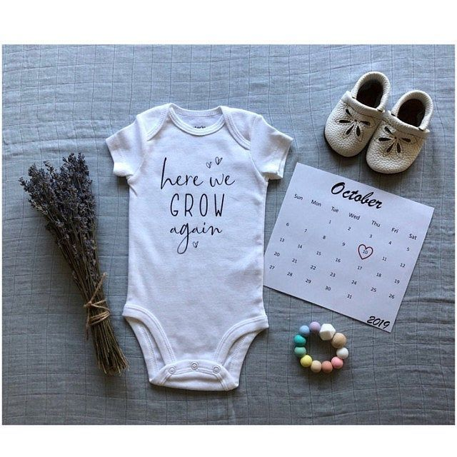 Pregnancy Announcement and Reveal Baby Onesie\u00ae Quarantine Baby Onesies\u00ae Take Home Outift Baby Shower Gift New Born Birth Announcement