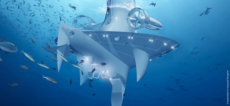 SeaOrbiter - Zoom of the Underwater View