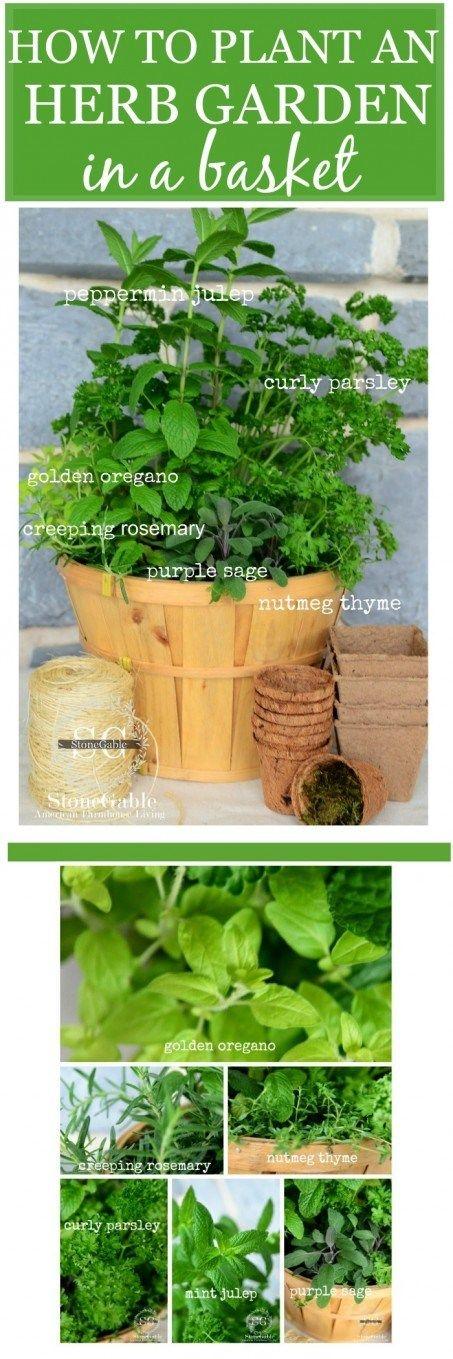 ideas about Kitchen Herb Gardens on Pinterest Patio
