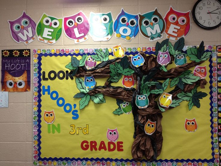 back to school bulletin board ideas | Look Hooo's in 3rd Grade! | Owl Themed Back-To-School Bulletin Board