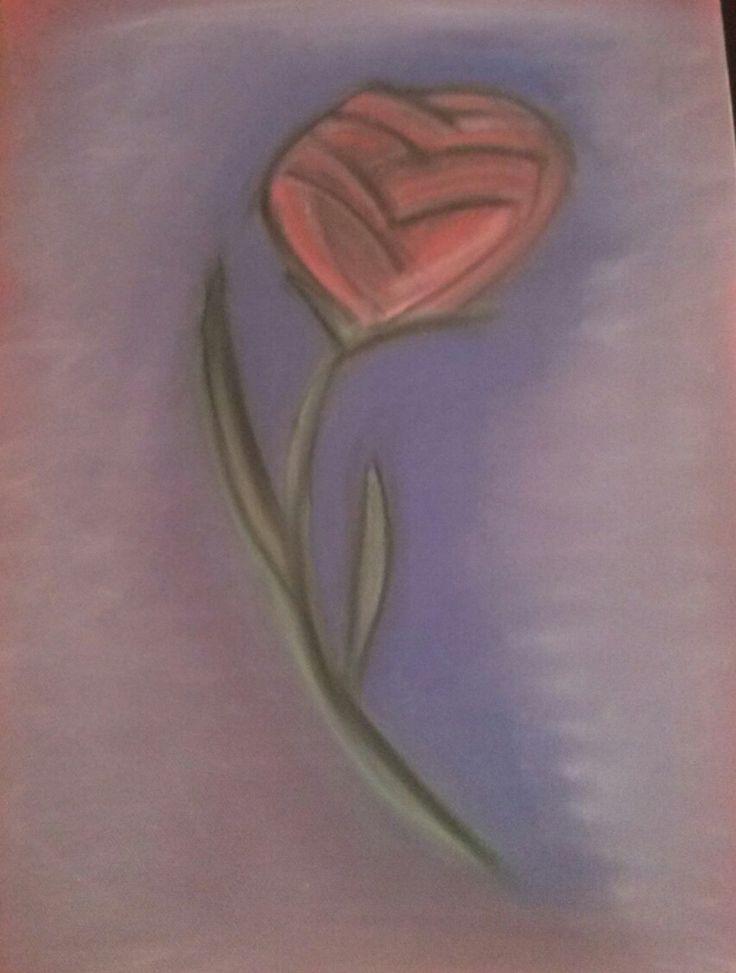 série rose 2