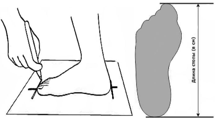 Как определить размер обуви и правильно подобрать размер