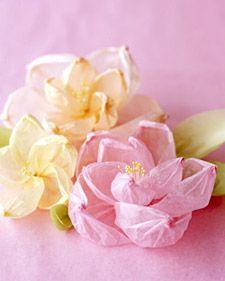 Tissue Flowers!