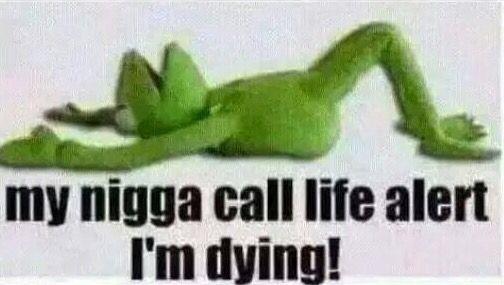 Funny Life Alert Meme : Images about kermit the frog on pinterest