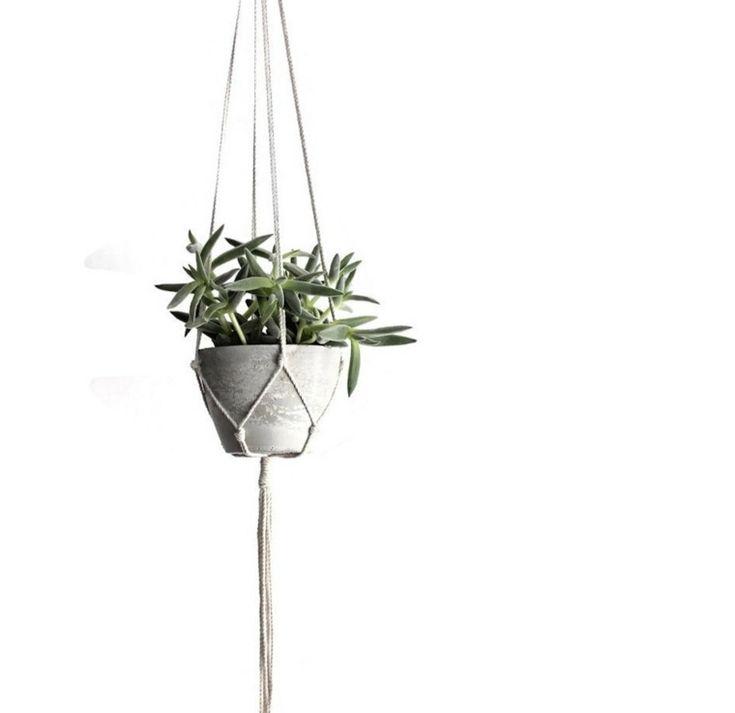 les 25 meilleures id es de la cat gorie pots de fleurs. Black Bedroom Furniture Sets. Home Design Ideas