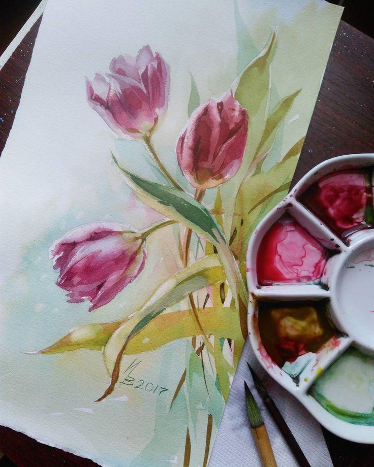 В ожидании солнца..... акварель, 37х22см., 2017 Розовые тюльпаны сдались первыми, эти темные оказались самыми стойкими #инна_петрашкевич #акварель #тюльпаны #цветы #арт #inna_petrashkevich #instagram #watercolor