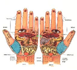 Reflex Centers on the Hand