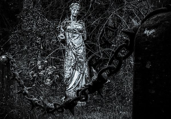 In this image I putted together two different objects from Birr Castle. Chain fence from Birr Castle entrance and statue from Birr Castle Demesne gardens.