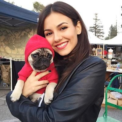 Hot: Birthday Girl Victoria Justice's 11 Cutest Instagrams Featuring Her Furry Friends