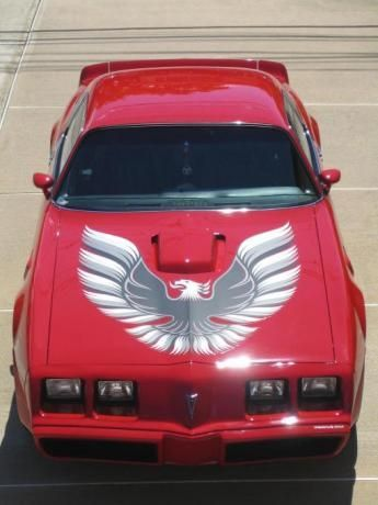 1979 Trans Am..Beautiful!I I had this car!! Loved it. It purred! Fast, too!