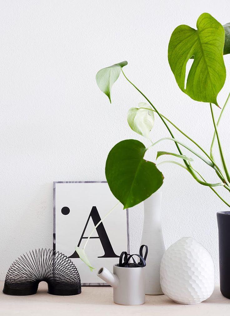 photo and styling: Riikka Kantinkoski