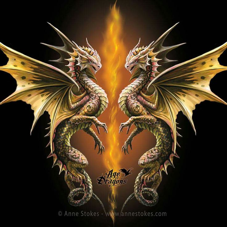 25 best ideas about anne stokes on pinterest dragons mythical creatures art and pet dragon. Black Bedroom Furniture Sets. Home Design Ideas