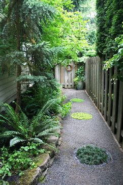 "Narrow side yard features a gravel path with inlaid ""stepping stones"" made of metal circles embedded in the gravel and ringed with Mexican black pebbles. Inside the stepping stones are plantings of dwarf mondo grass, 'Sunshine' creeping veronica, and Corsican mint. Plantings include natives such as evergreen huckleberry, mountain hemlock, sword fern, and deer ferns."