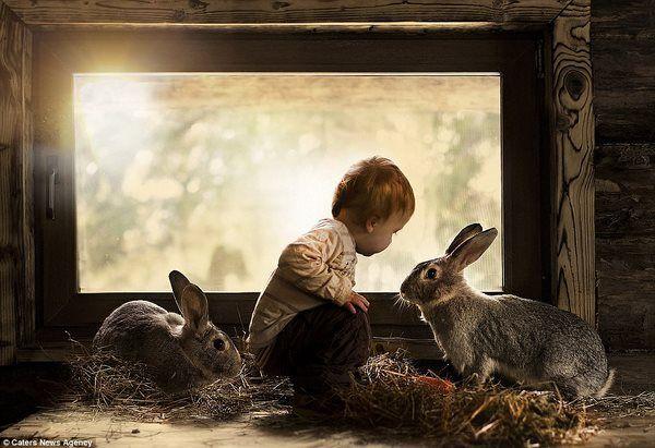 diaforetiko.gr : Μητέρα φωτογραφίζει με μαγικό τρόπο τα παιδιά της παρέα με ζώα
