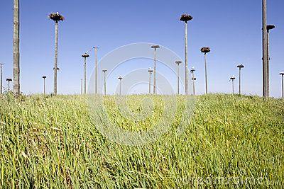 García Juan (Jgaunion) – Extremadura Stock Photos & Images - Dreamstime - Page 2