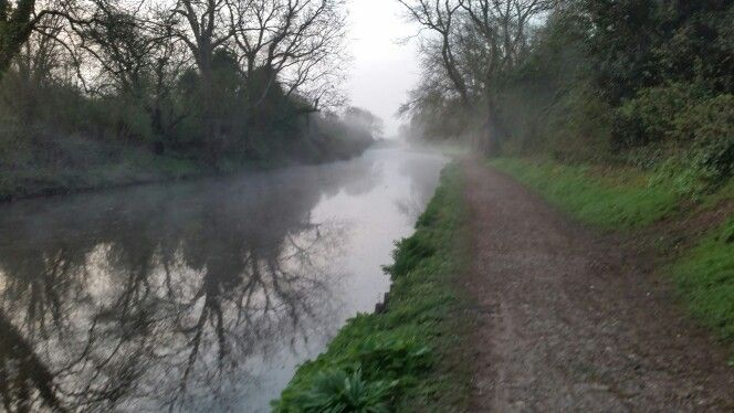 Early morning chichester canal