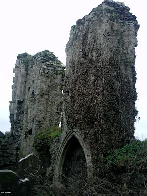 Ireland In Ruins: Clane Abbey Co Kildare