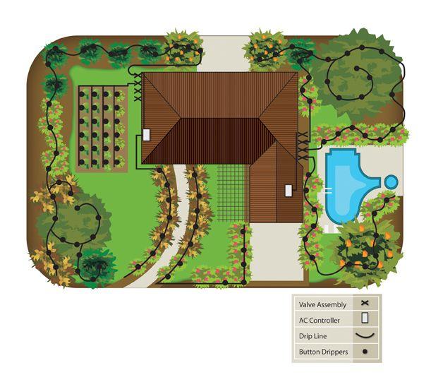 Best 20+ Drip System Ideas On Pinterest | Garden Watering System