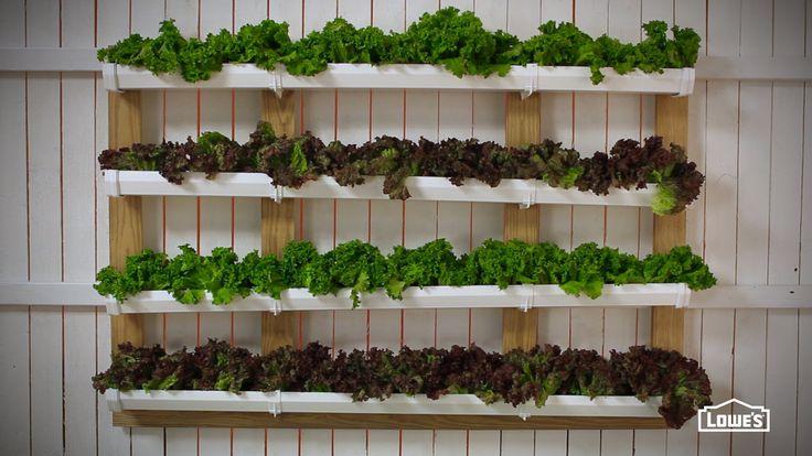 DIY Vertical Home Gutter Garden Video Tutorial