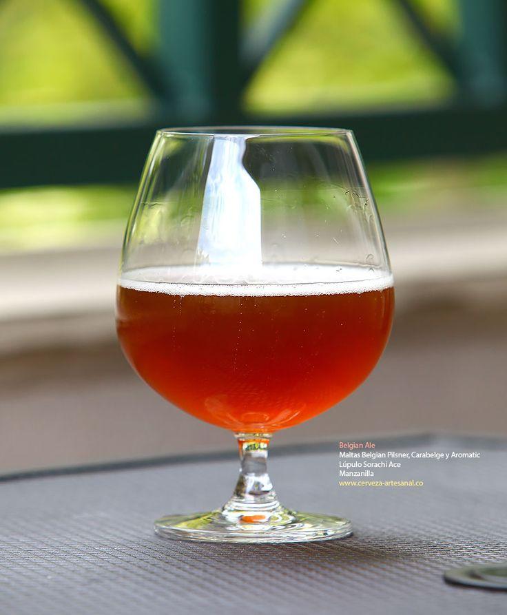 Belgian Ale con maltas Belgian Pilsner, Carabelge y Aromatic; lúpulo Sorachi ace y adición de manzanilla | Cómo hacer cerveza artesanal en casa