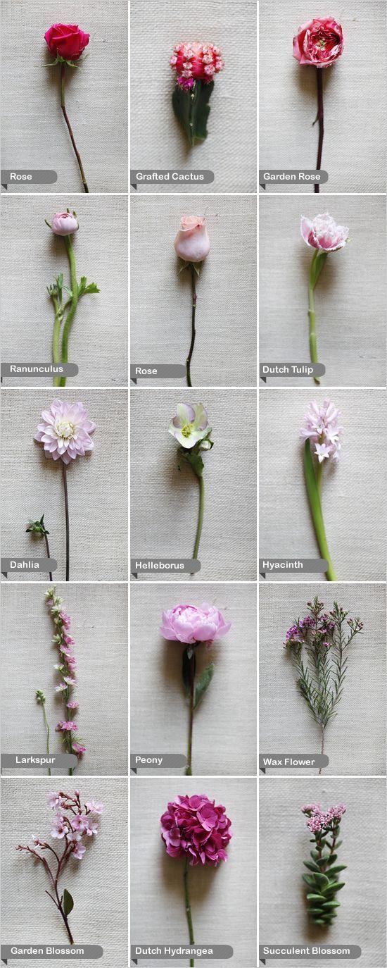 Pink wedding Flowers - dahlia, larkspur, Dutch hydrangea, Dutch tulip, garden blossom, garden rose, rose, grafted cactus, helleborus, hyacinth, peony, ranunculus, succulent blossom, and wax flower.: