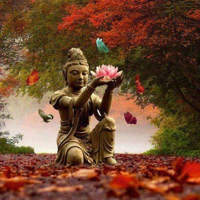 Buddha!!
