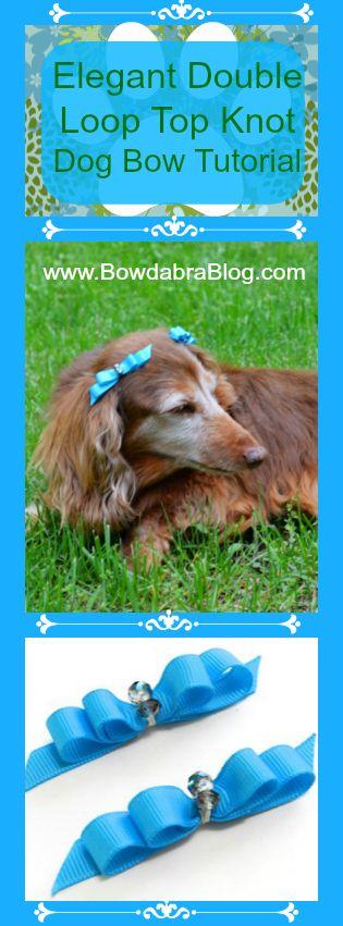 Elegant Double Loop Top Knot Dog Bow Tutorial