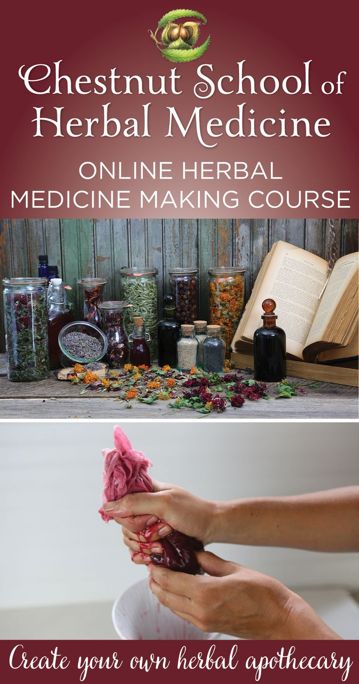 Our online Medicine Making Course is 10% off through September 16th in celebration of fall!!