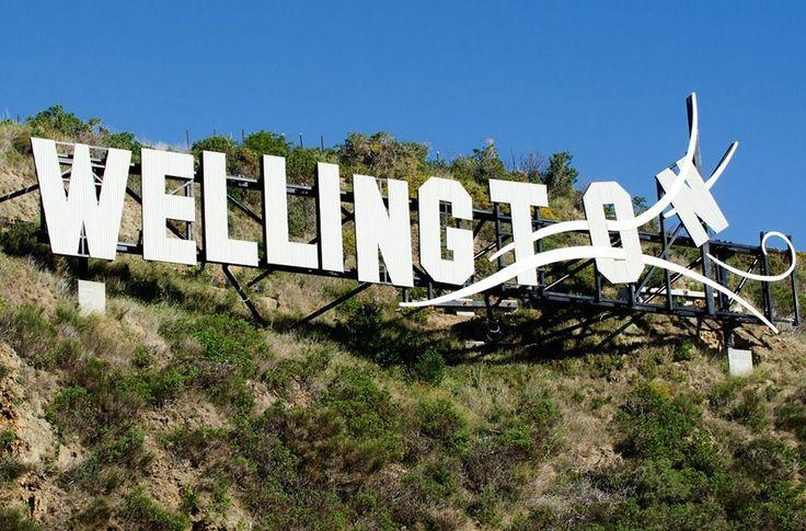 Wellington!!!!✨