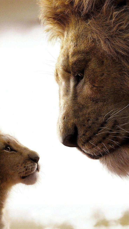 Картинки король лев 2019