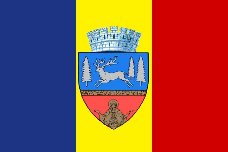 Flag of Bacau, Romania