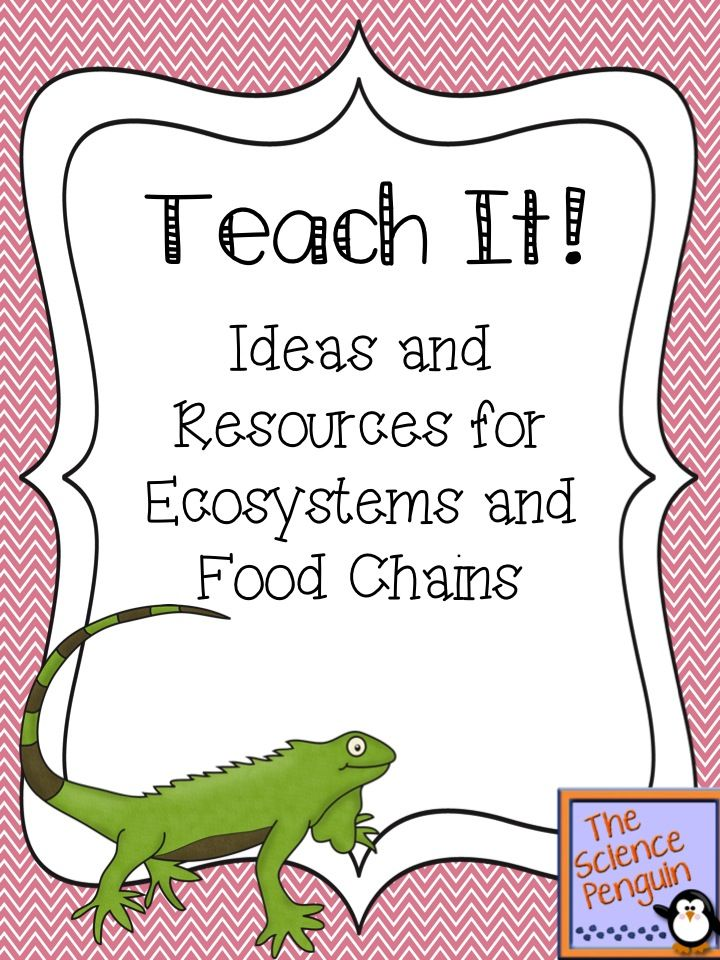 Teach It: Resources and Ideas for Ecosystems and Food Chains