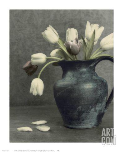 Spring Blooms II Art Print by Diane Poinski at Art.com