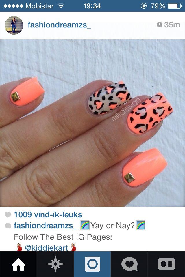 tijger oranje