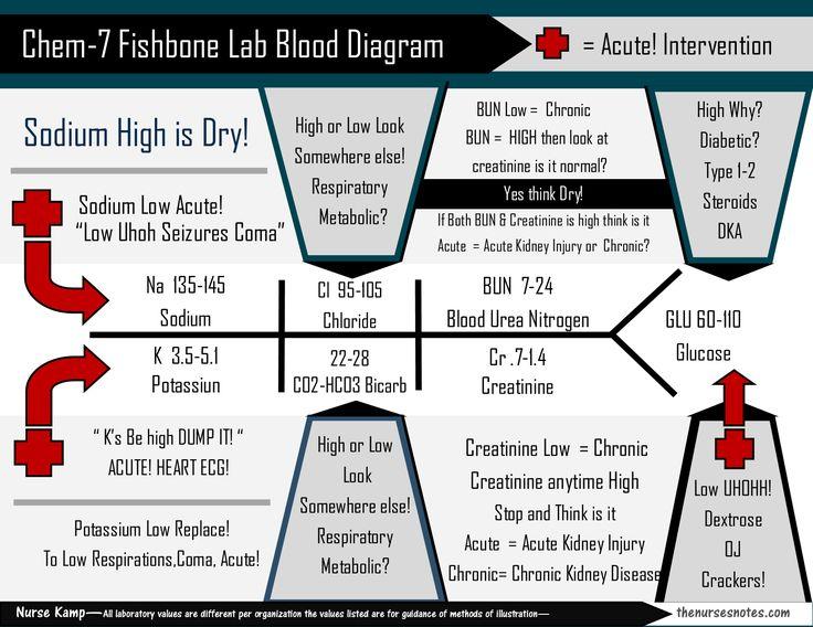 lab values diagrams electrolytes 17 best images about fnp-diagnostics on pinterest | count ...