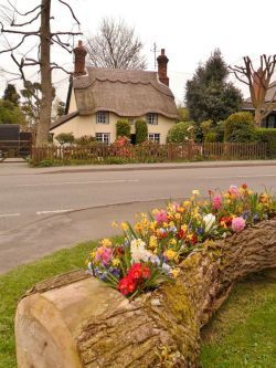 """tqe1:  """" Thatched Cottage, Market Bosworth, Leicestershire, England.  This pretty little market town lies deep in the heart of Leicestershire's rich countryside. The nearby Bosworth Field is renowned as the site for the decisive battle of the 'War of..."""