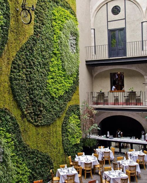 The green wall!!  The Downtown Mexico Hotel is designed by Cherem Serrano Arquitectos and is located in #MexicoCity #Mexico // Photo by Grupo Habita #restlessarch - Architecture and Home Decor - Bedroom - Bathroom - Kitchen And Living Room Interior Design Decorating Ideas - #architecture #design #interiordesign #homedesign #architect #architectural #homedecor #realestate #contemporaryart #inspiration #creative #decor #decoration