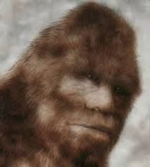 The Truth Behind Bigfoot