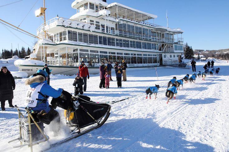 Apasionante carrera de trineos de perros en Fairbanks, Alaska