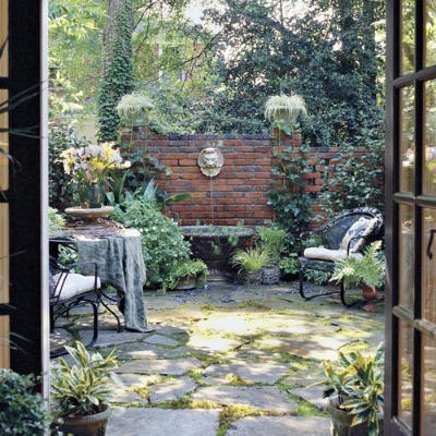 Small courtyard garden.