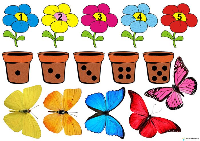 задания и игры на тему цветы