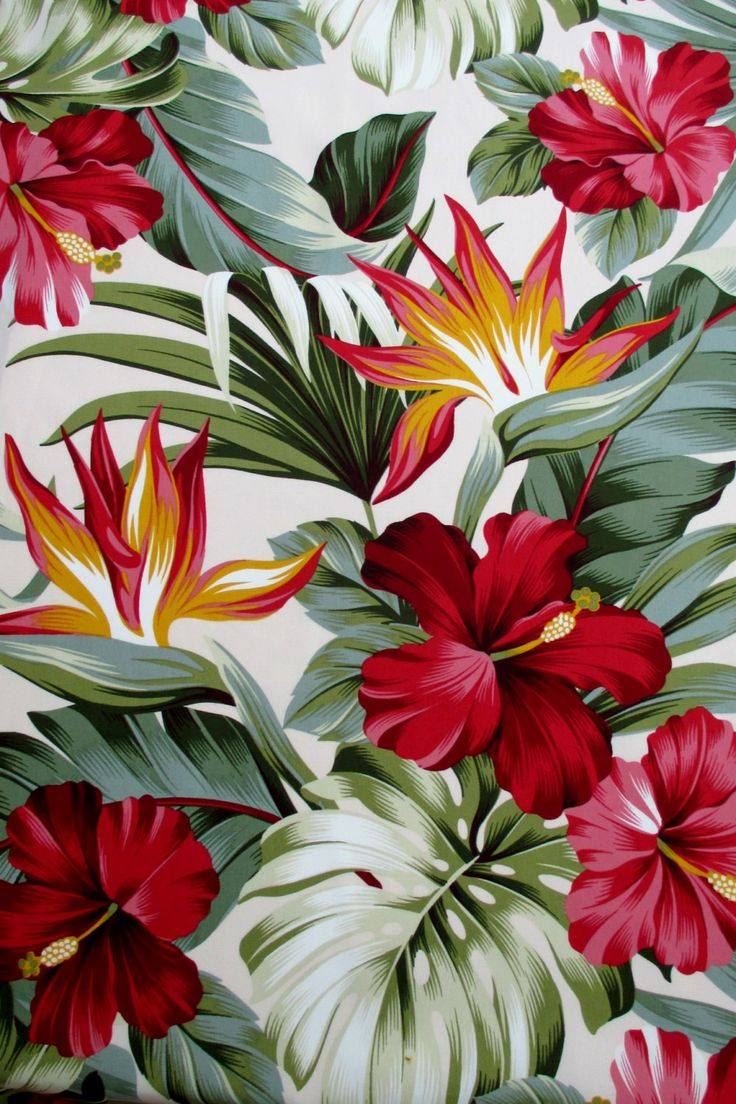 Cloth, Crimson Hibiscus Floral on Cream, Tropical Hawaii, Hen of Paradise Flower, By The Yard