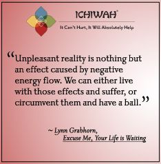 Unpleasant reality is nothing but an effect caused by negative energy flow. We can either live with those effects and suffer, or circumvent them and have a ball. – Lynn Grabhorn, Excuse Me, Your Life Is Waiting