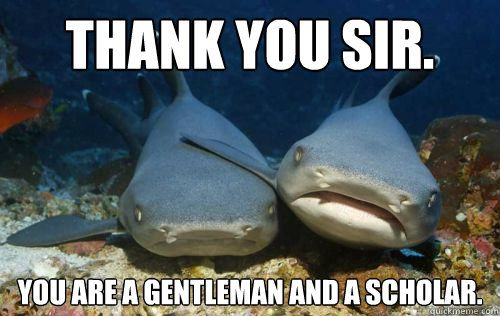 Funny Memes To Say Thank You : Best images about more sharkiness on pinterest cars